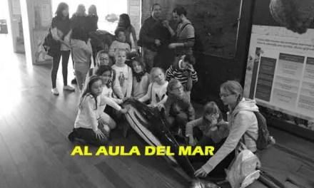 Actividades en Málaga- 1