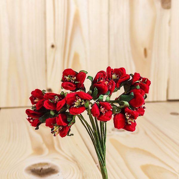Fiorellino di campo con pistilli rosso