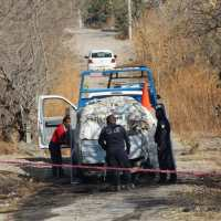 Dos calcinados en vehículo en Temixco