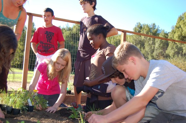 Sized_Miller Creek_Planting Day