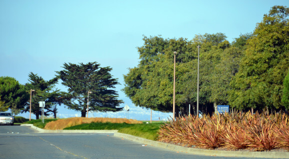 harbor-bay-median