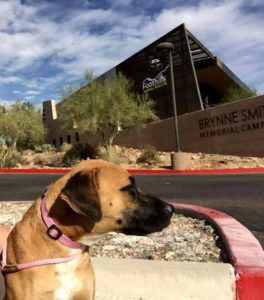 foothills-animal-rescue-exterior