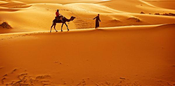 man riding camel in Sahara
