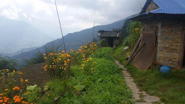 Sherpa's Lush Yard in Cheulemu