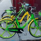 Have an opinion about Bike Share? Share it.
