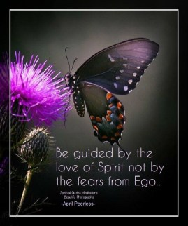 Be guided by the love of Spirit, not by the fears from Ego. Ego brings in fear. Love brings in peace.. The love of Spirit is the food for our Souls. April Peerless2014