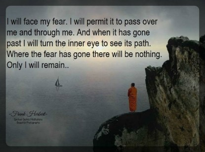 I must not fear. Fear is the mind-killer. Fear is the little-death that brings total obliteration. I will face my fear. I will permit it to pass over me and through me. And when it has gone past I will turn the inner eye to see its path. Where the fear has gone there will be nothing. Only I will remain.. ~Frank Herbert