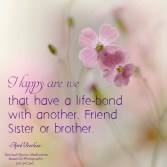 Friend sister or brother