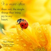 It is more often than not, the simple things that bring my heart joy. A.Peerless