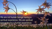 We are not human beings having a spiritual experience. We are spiritual beings having a human experience.. ~Pierre Teilhard de Chardin