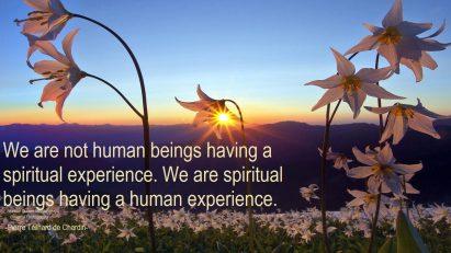 We are not human beings having a spiritual experience. We are spiritual beings having a human experience.. ~Pierre Teilhard de Chardin