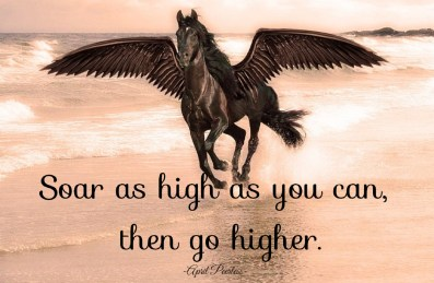 Soar as high as you can, then go higher.. ~April