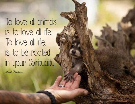 To love all animals is to love all life. To love all life, is to be rooted in your spirituality. ~April Peerless