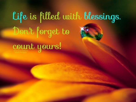 Life is filled with blessings. Don't forget to count yours! ~April
