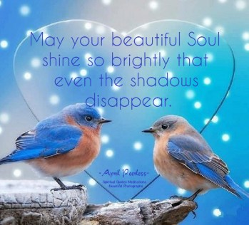May your beautiful Soul shine so brightly that even the shadows disappear. ~April Peerless