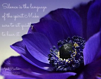 As the flower of my Soul begins to open, the colors of his light begin to flow in. Silence is the language of the spirit. Make sure to sit quietly to hear it. April Peerless