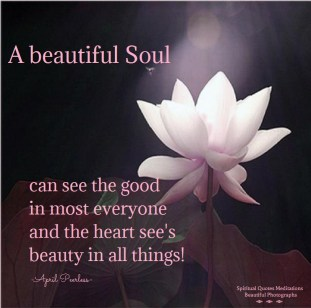 A beautiful Soul can see the good in most everyone and the heart see's beauty in all things! -April Peerless
