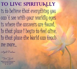 To live blindly is to see the World and believe that is all there is, that there is nothing more.. To live Spiritually is to believe that everything you can't see with your worldly eyes is where the answers are found. In that place I begin to feel alive. In that place the World can teach me more.. April Peerless
