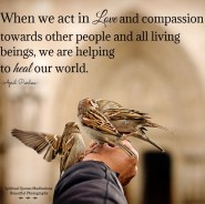 When we act in love and compassion towards other people and all living beings,we are helping to heal our world. Each of us must realize that It starts with ourselves.Each of us should be a light unto the World. April Peerless