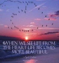 When we see life from the heart we become a person with empathy and compassion. With empathy and compassion a whole new understanding emerges. Life becomes more precious and people become more lovable through a new understanding. April Peerless