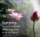 Once you begin your search for spiritual wisdom, something beautiful begins to happen. You see it everywhere.Through others, through nature, in your thoughts, and in the beautiful silence where everything becomes so clear. Keep going, the most beautiful things are waiting to be discovered. April Peerless