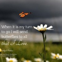 When it is my turn to go I will send butterflies to all that I love.. April Peerless SQMBP