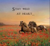 Stay wild at heart..