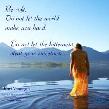 Be soft. Do not let the world make you hard. Do not let pain make you hate. Do not let the bitterness steal your sweetness. Take pride that even though the rest of the world may disagree, you still believe it to be a beautiful place. Kurt Vonnegut