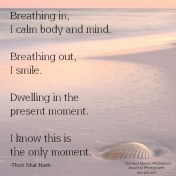 Breathing in, I calm body and mind. Breathing out, I smile. Dwelling in the present moment. I know this is the only moment. Thich Nhat Hanh