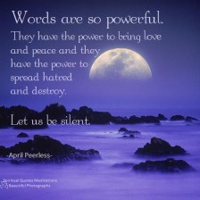 Words are so powerful.They have the power to bring love and peace and they have the power to spread hatred and destroy. Let us be silent. April Peerless