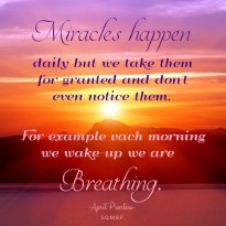 Miracles happen daily but we take them for granted and don't even notice them. For example; each morning we wake-up we are breathing. A.Peerless