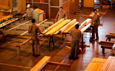 Nación considera a Corrientes como zona estratégica del desarrollo forestoindustrial