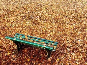 Sonho de Outono