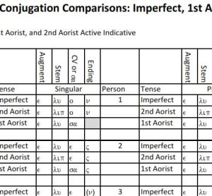 Verb Conjugation Comparisons