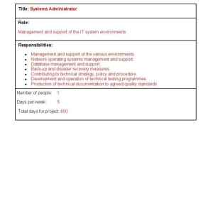 project roles and responsibilities template
