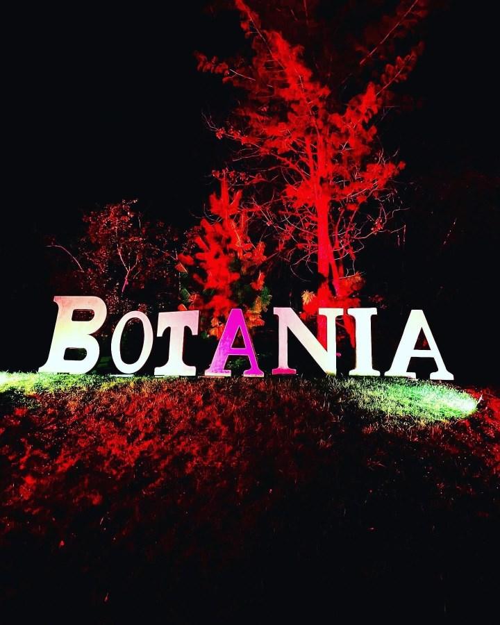 Guck mal, eine Fee: Die Botanische Nacht 2021
