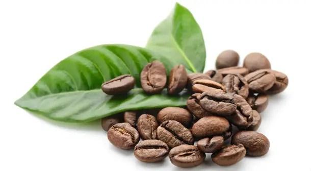 https://i2.wp.com/apetitoenlinea.com/wp-content/uploads/2018/11/large_article_im327_coffee.jpg?resize=610%2C335&ssl=1
