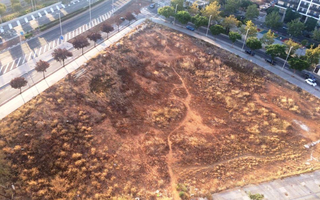 El PP solicita la limpieza de un solar lleno de maleza y suciedad en Parc Central