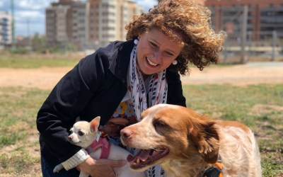Folgado se compromete a construir un refugio de animales en Torrent