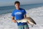 Shark Fishing Slows...