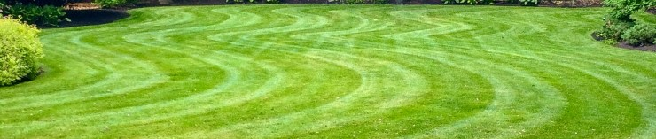 Lawn with wavy striping lines