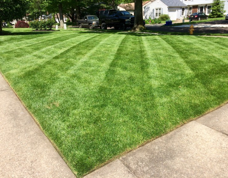 lawn mowing with diagonal lines