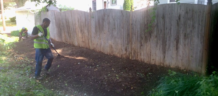 removal of over grown weeds along fence