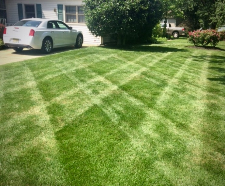 Mowing stripe patterns enhance lawn