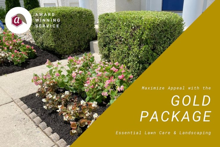Residential Yard Care Service Package Gold