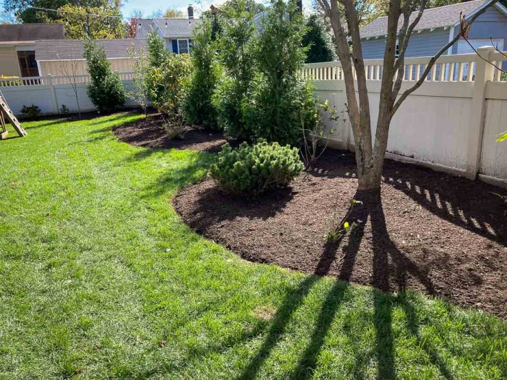 Tree Planting and Garden Bed Making