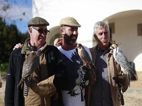 Reunião de falcoeiros em Portugal
