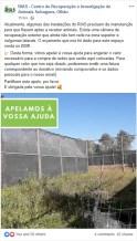 Apelo lançado pelo RIAS nas redes sociais