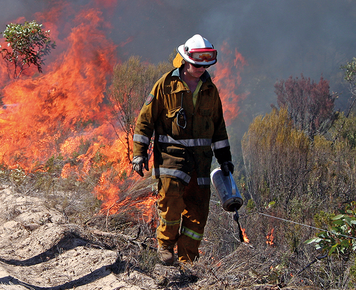 Both the Bushfire and Natural Hazards CRC, and Bushfire CRC, have conducted a wealth of research into the effectiveness of prescribed burning. Pictured is a study undertaken in South Australia's Ngarkat Conservation Park in 2008.
