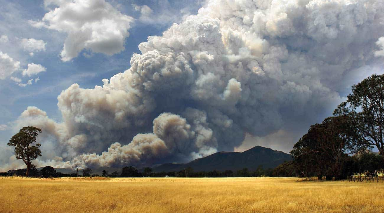 Large smoke plumes from bushfires can allow spot fires to start well ahead of the main fire front.